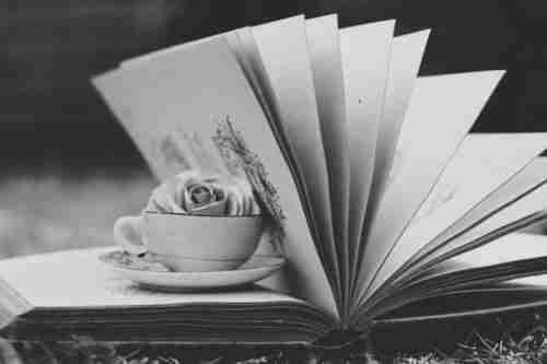booksd